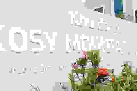 Phó Thủ tướng yêu cầu kiểm tra dự án khu đô thị hơn 400 tỷ đồng của Kosy