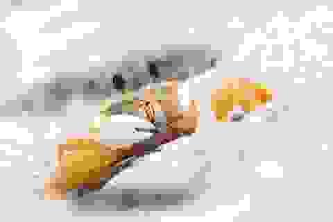 Loài cua ma kì lạ dùng răng trong dạ dày để… hù doạ đối thủ