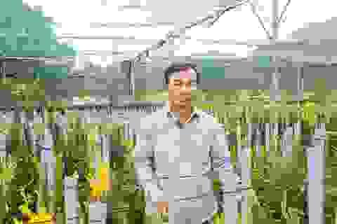 Đưa lan Mokara về miền núi, nông dân Đà Nẵng thu lãi 30 triệu đồng/tháng