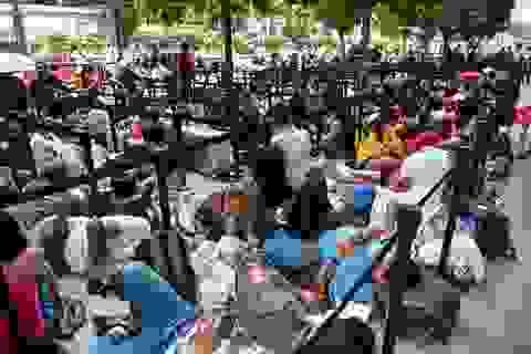 """Tường thuật từ Singapore: Cả ngàn người """"ăn chực nằm chờ"""" iPhone 11"""