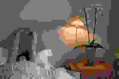 Chúng ta thực sự cần bao nhiêu giờ để ngủ?
