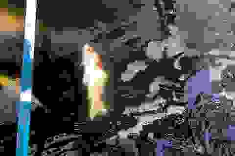 Chuyên gia thủy sản nói gì về việc cá Koi chết ở sông Tô Lịch?