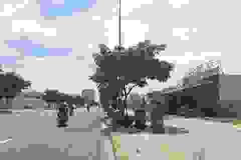 Thực hư việc người nước ngoài núp bóng mua đất tại Đà Nẵng