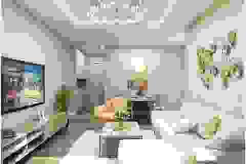 Căn hộ the City Light Vĩnh Yên: Cơ hội đầu tư cho thuê hấp dẫn