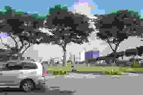 UBND TP Đà Nẵng thua kiện một doanh nghiệp