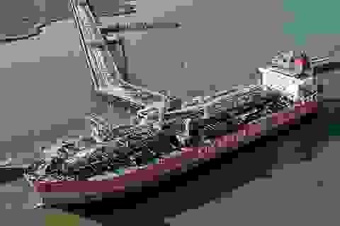 """Vinalines: Mua 3 tàu gần 230 tỷ đồng thì giá trị """"bốc hơi"""" đến 135 tỷ!"""