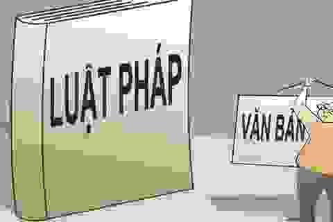 Chuyện ông Chủ tịch xã ở Đồng Tháp và ông Chủ tịch TP Hà Nội