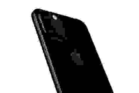 Lộ thông tin về bộ 3 iPhone mới sẽ ra mắt trong năm 2019