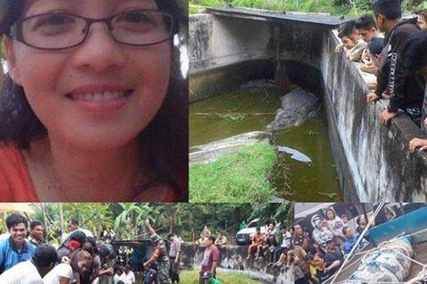 Cá sấu nhảy lên tường 2,5m, vồ chết nhà khoa học Indonesia
