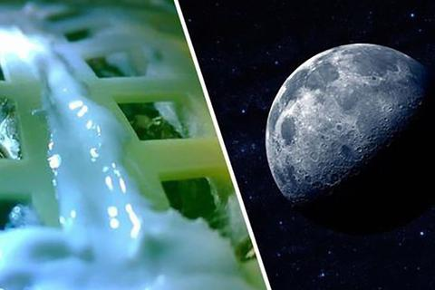 Giống cây đầu tiên được trồng trên Mặt Trăng đã chết