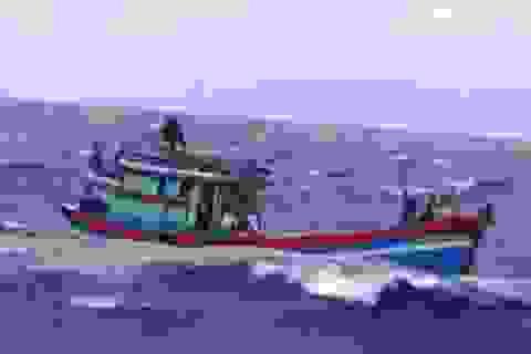 Ngồi trong cabin tàu vẫn bị sóng hất văng xuống biển mất tích