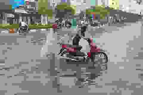 Ảnh hưởng bão số 1, Bạc Liêu - Cà Mau ngập nặng vì mưa lớn