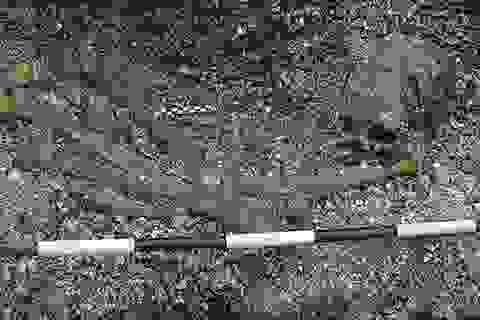 Phát hiện mộ táng có niên đại lâu đời nhất thế giới