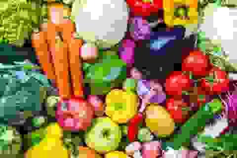 Tại sao cho trẻ ăn theo chế độ ăn chay có thể gây rủi ro?