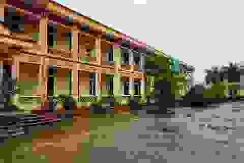 Ninh Bình: 12 học sinh tiểu học bị chó cắn trong sân trường