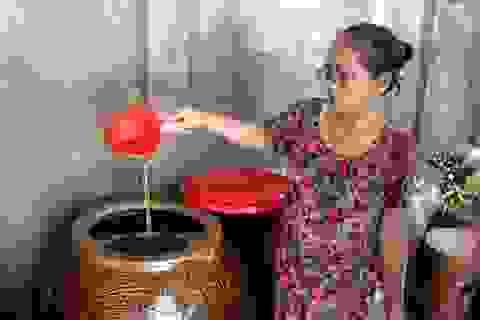 Giáp Tết: Làng nghề nước mắm Phú Yên nhộn nhịp vào vụ