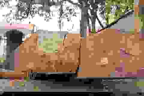 Phó ban chỉ huy quân sự xã chém công an do xin xe gỗ lậu bất thành
