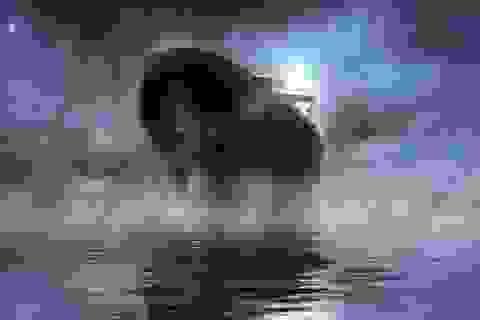 """""""Con tàu ma"""" bí ẩn hàng thế kỷ cuối cùng đã được tìm ra"""