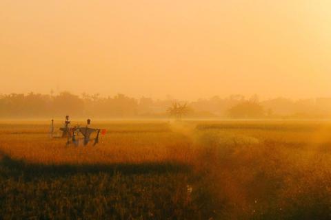 Những góc ảnh đẹp của nhiếp ảnh gia Việt Nam tại giải ảnh quốc tế