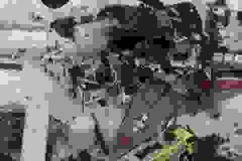 """""""Pháo đài bay"""" B-17 của Mỹ gặp nạn, 7 người chết"""
