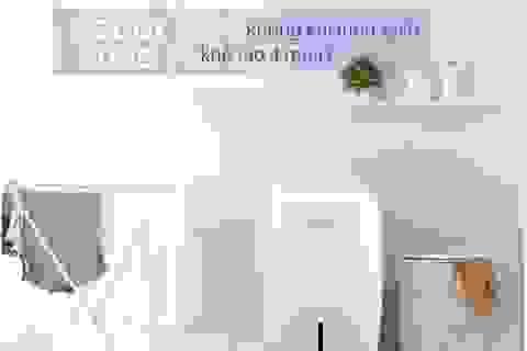 Mẹo chọn máy lọc không khí cho gia đình và văn phòng