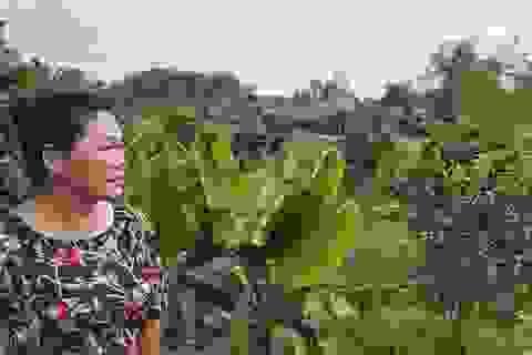 """Chuyện lạ tại Thanh Hoá: Chủ đầu tư khốn đốn vì quy hoạch đất bị """"đổ nhầm mầu mực"""""""