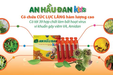 An Hầu Đan Kids sở hữu thảo dược vàng cúc lục lăng