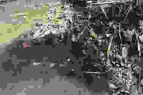 Chất Styren trong nước sạch sông Đà ảnh hưởng thế nào đến sức khỏe?