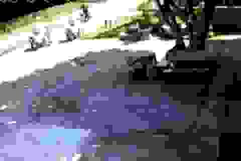 """CSGT dọn 2 bao tải rác nằm """"chỏng chơ"""" giữa đường"""