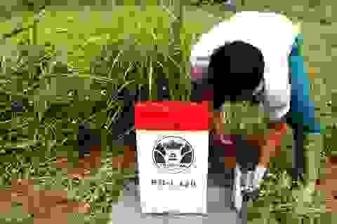 Ninh Bình nói gì về việc chi 6 tỷ đồng cắm mốc bảo vệ di sản Tràng An?