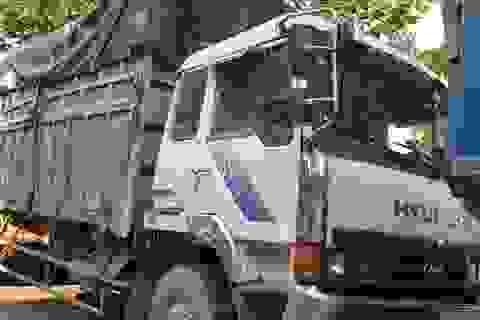 Bỏ trốn khi bị phát hiện đổ trộm rác thải, tài xế bị rắn độc cắn