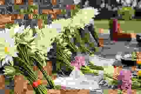 """Theo dấu chân """"Cuộc đời Đức Phật"""""""