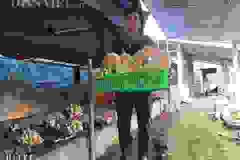 Nam Định: Kỹ sư địa chất về quê trồng đủ thứ nấm, lãi 400 triệu đồng/năm