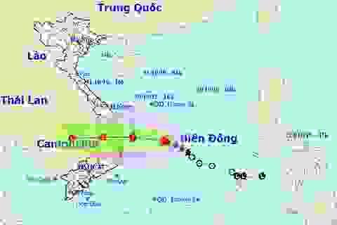 Chiều nay bão số 5 vào vùng biển Quảng Ngãi - Ninh Thuận