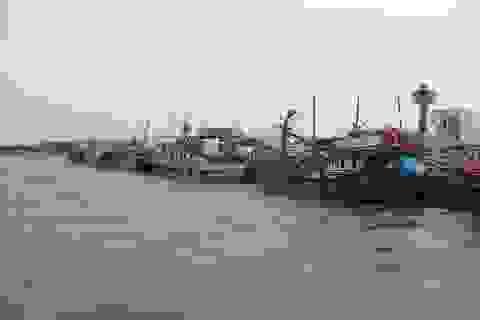 """Ngư dân Sóc Trăng đồng lòng nỗ lực gỡ """"thẻ vàng"""" ngành thủy sản"""