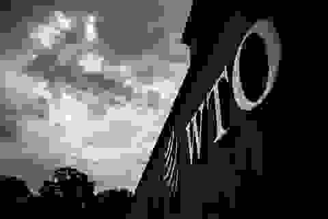 Kiện Mỹ ra tòa của WTO: Trung Quốc thắng, xử phạt 3,6 tỷ USD các sản phẩm của Mỹ