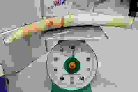 Bắt người đàn ông mang nguyên chiếc ngà voi từ Thái Lan về Việt Nam