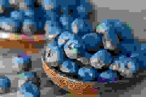 Những loại trái cây tốt nhất cho bệnh nhân ung thư
