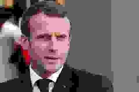 """Tổng thống Pháp ví NATO đang bị """"chết não"""""""