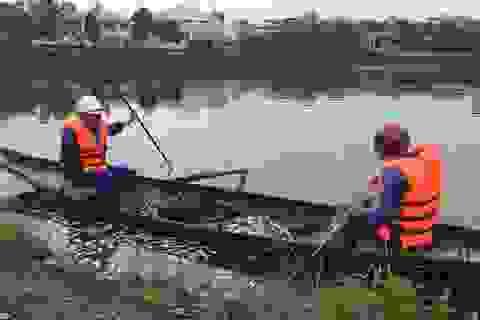 Hàng tấn cá chết bốc mùi hôi thối ở hồ nước giữa lòng thành phố