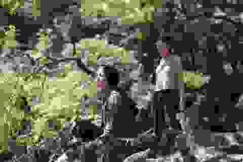 """16 phim """"bom tấn"""" tranh giải tại Liên hoan phim Việt Nam lần thứ 21"""
