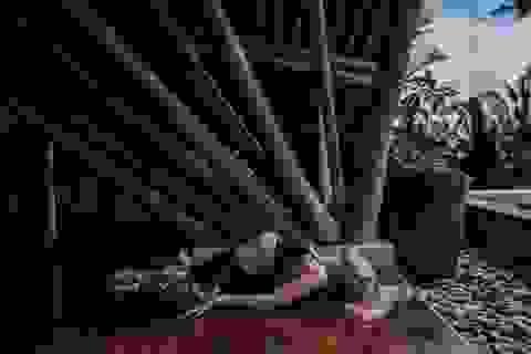Các bài tập yoga cho bệnh nhân ung thư phục hồi năng lượng