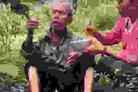 Hai mẹ con đem cơm lên núi bón cho cụ già đi lạc