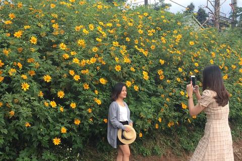 Du khách nườm nượp về miền Tây Quảng Trị thưởng thức vẻ đẹp hoa dã quỳ