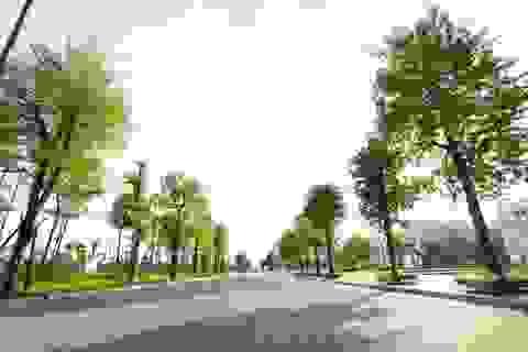 Thị trường địa ốc sôi động cùng đợt mở bán mới của The Manor Central Park