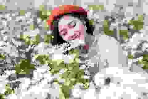 Thiếu nữ Hà thành duyên dáng bên cúc hoạ mi đầu mùa