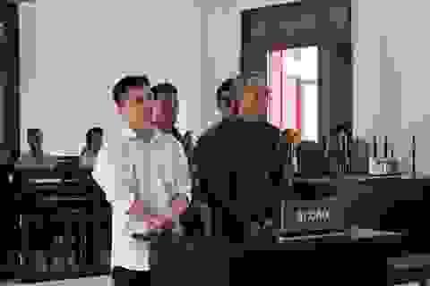 Vụ băm nát 110ha đất, rừng ở Phú Mỡ: Không có thêm cán bộ nào hầu tòa?