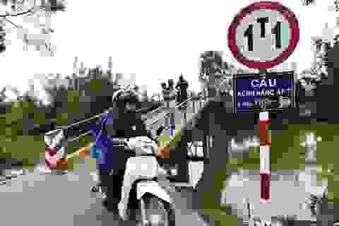 Nhìn cây cầu kiên cố này ở Tiền Giang, chẳng ai ngờ đây là công trình từ nắp chai tái chế!