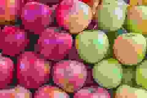 Biến đổi khí hậu có thể làm táo đỏ biến mất!