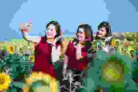 Lễ hội hoa hướng dương 2019 sẽ diễn ra trong 3 ngày